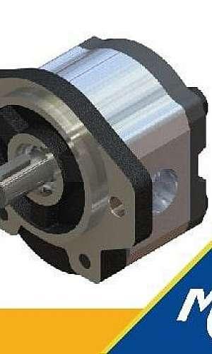 Motor hidráulico Bosch